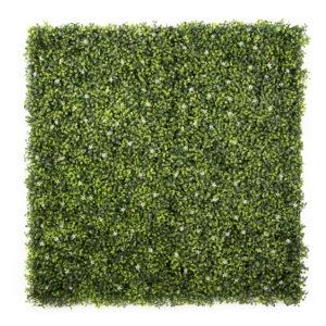 easyivy Flower Green Buxus